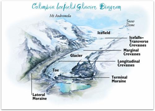 Diagram of a Glacier
