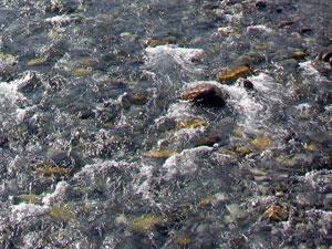 Melt Waters of the Kananaskis